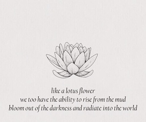 quotes, lotus, and flowers image