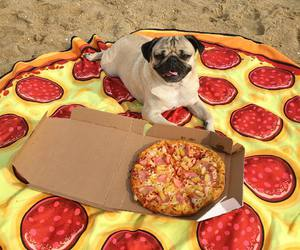 dog, pizza, and beach image