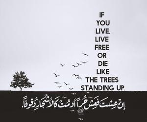بنت بنات شباب رجال and عربي عرب كتابه اقتباس image