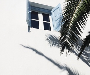 summer, white, and window image