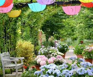 garden, hydrangea, and umbrella image