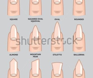 nails and nail shapes image