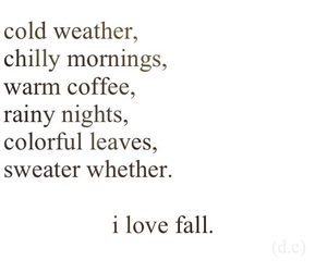 fall, quote, and cold image