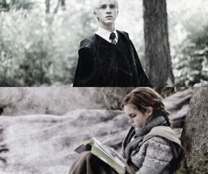 book, harry potter, and dramione image