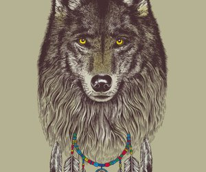 wolf, animal, and Dream image
