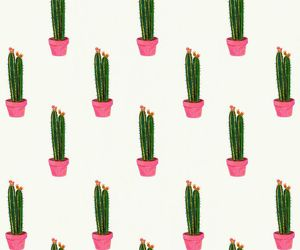 cactus, design, and fashion image