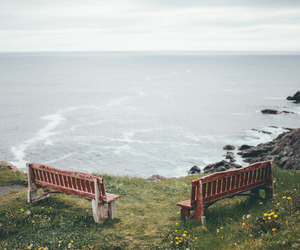 sea, bench, and nature image