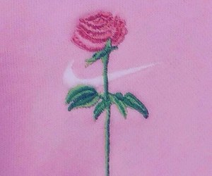pink, rose, and nike image