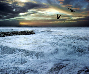 mar, ocean, and portugal image