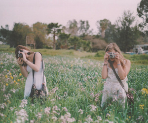 flowers, photo, and summer image