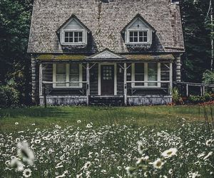 nature and house image
