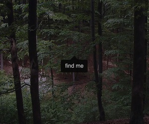 nature, find me, and woods image