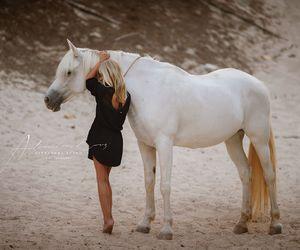 animal, beautiful, and girl image