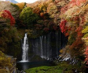 japan, waterfall, and nature image