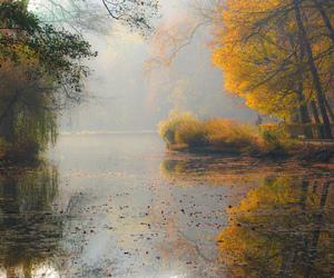 autumn, Croatia, and ringexcellence image