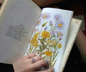 book, flowers, and tumblr image