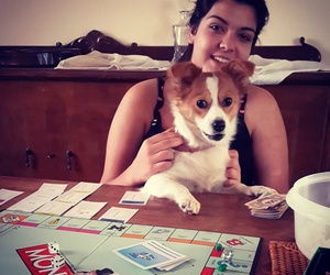 dog, monopoly, and play image