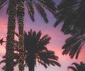 light, sunset, and summer image