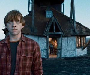 harrypotter, hp, and ron weasley image