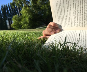afternoon, beautiful, and book image