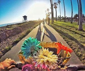 bike, california, and flowers image
