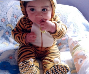 baby, beatiful, and tigre image