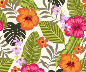 flowers, pattern, and floral image
