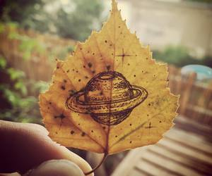 autumn, art, and leaves image