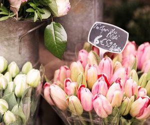 florist, romantic, and flowers image