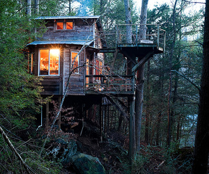 nature, house, and forest image