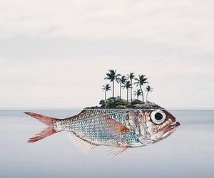 fish, art, and surrealism image
