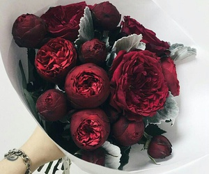 flowers, indie, and red image