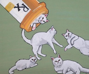 cat, pills, and art image