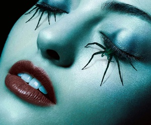 ahs, american horror story, and spider image