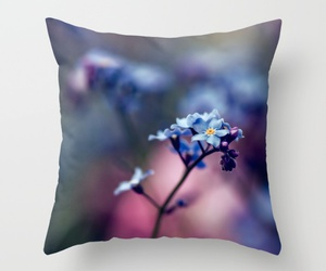 forget-me-not, myosotis, and flower image