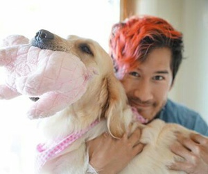 dog, markiplier, and chica image