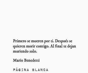 frase, mario, and quote image
