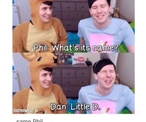 dan, phil, and danisnotonfire image