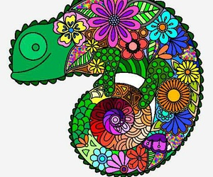 animal, colores, and flores image