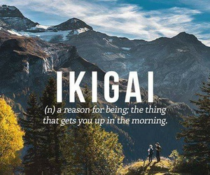 japanese, ikigai, and words image