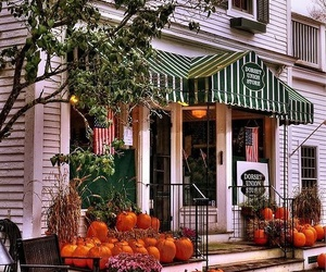 autumn, fall, and store image