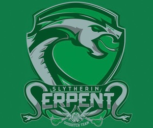 slytherin, hogwarts, and quidditch image