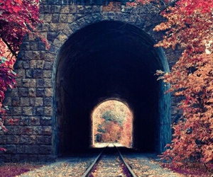 wallpaper, autumn, and train image
