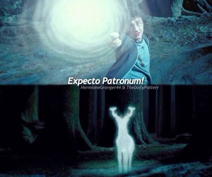 patronum, potter, and harry image