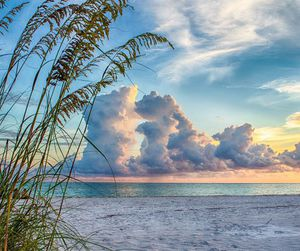 beach, clouds, and sand image