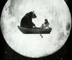 bear, moon, and night image