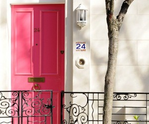 24, blossoms, and door image