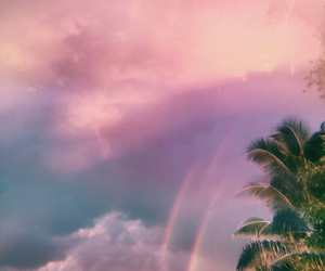 palm trees, clouds, and pink image