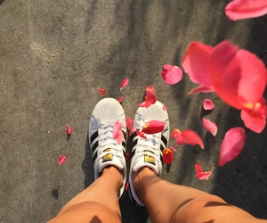flowers, summer, and adidassuperstar image