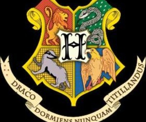 harry potter, hogwarts, and gryffindor image
